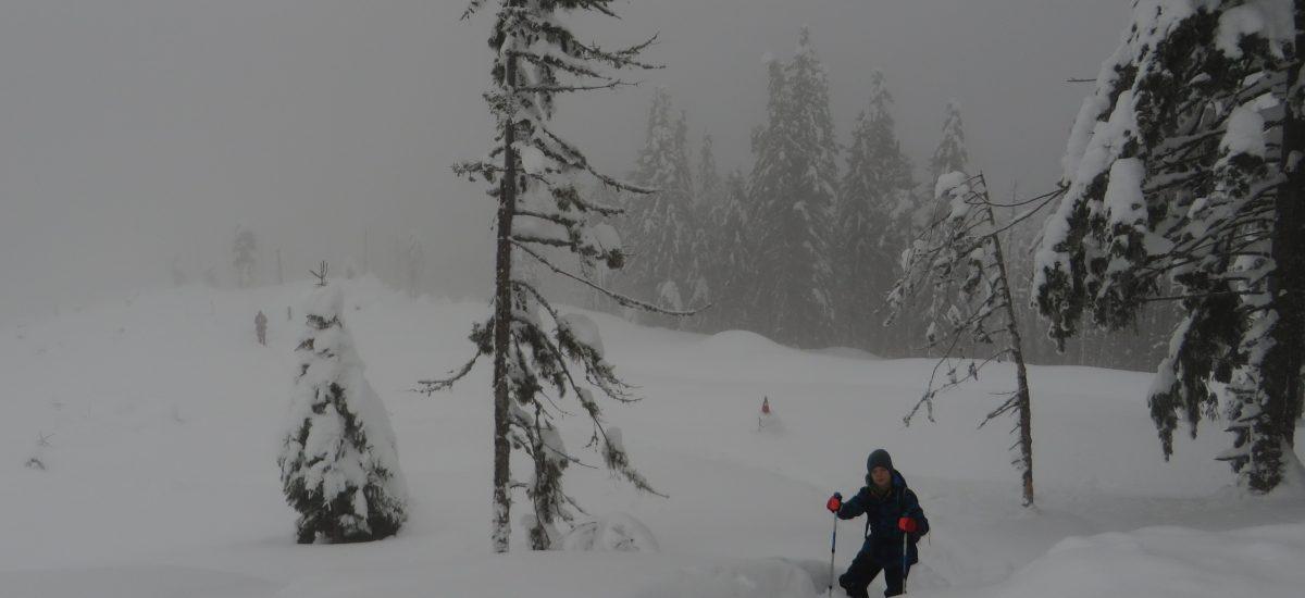 Nu mai pot, hai să ne întoarcem – călătoria la munte cu Vlad, partea a doua
